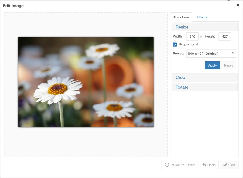 The Image Editor layout